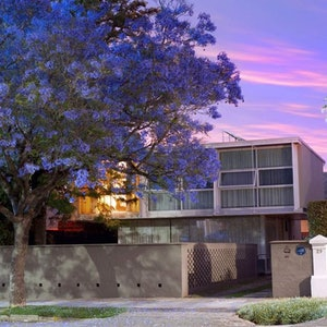 (CreativeWork) Jacarandas and Modernism Ed. 1 of 1 by Alex Frayne. Photograph. Shop online at Bluethumb.