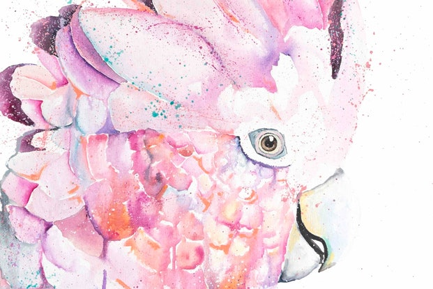 (CreativeWork) Rose Water by Stephanie Elizabeth. Acrylic Paint. Shop online at Bluethumb.