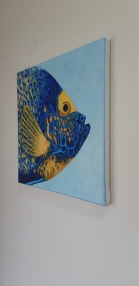 (CreativeWork) Blue Faced Angelfish by Naomi Veitch. Oil Paint. Shop online at Bluethumb.