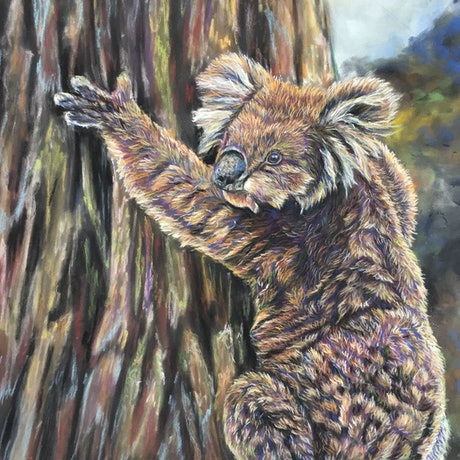 (CreativeWork) Climbing high by Lucy Mengler. Other Media. Shop online at Bluethumb.