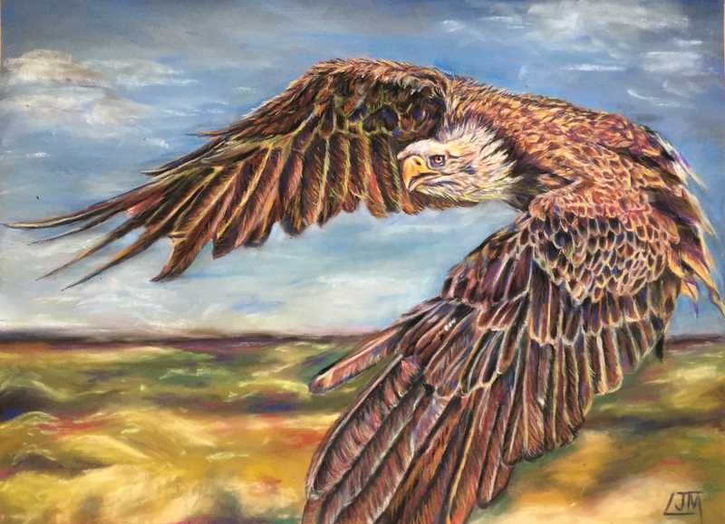 (CreativeWork) Eagle Eyed by Lucy Mengler. Other Media. Shop online at Bluethumb.