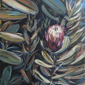 (CreativeWork) June's Protea from the Long Weekend by Susan Ruming. #<Filter:0x00005558c9e188f0>. Shop online at Bluethumb.