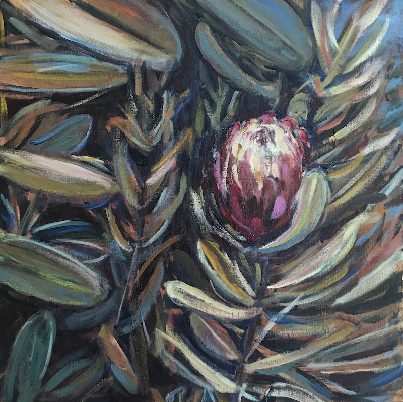 (CreativeWork) June's Protea from the Long Weekend by Susan Ruming. Acrylic Paint. Shop online at Bluethumb.