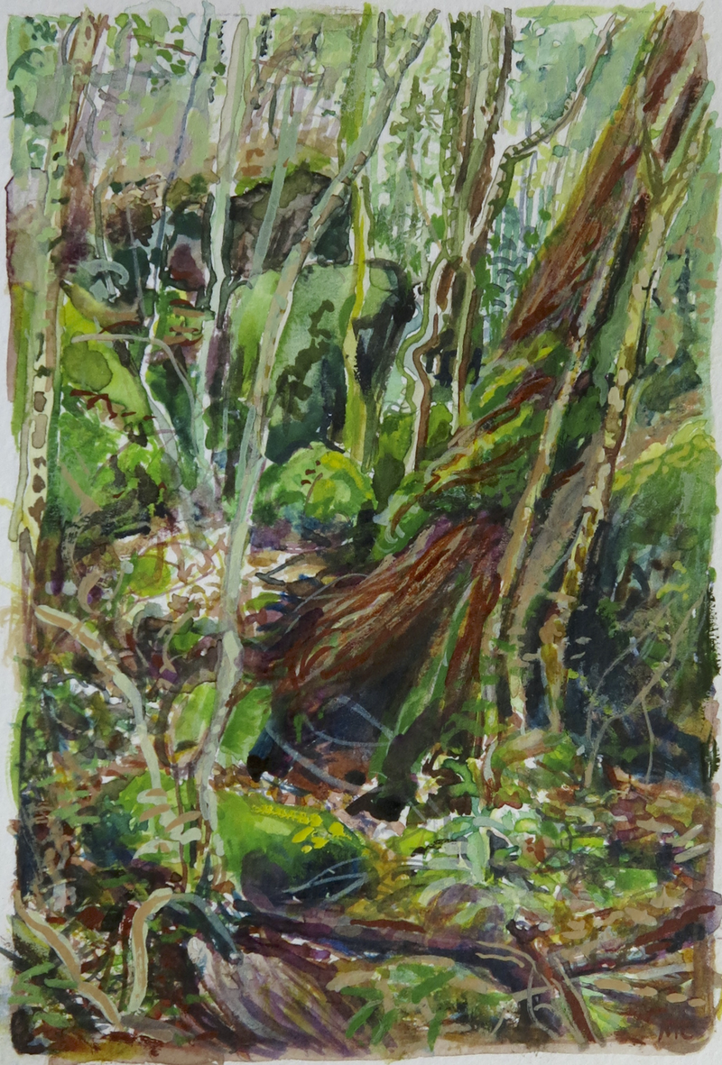 (CreativeWork) Jungle Circuit 7 by Meredith Cooper. Watercolour Paint. Shop online at Bluethumb.