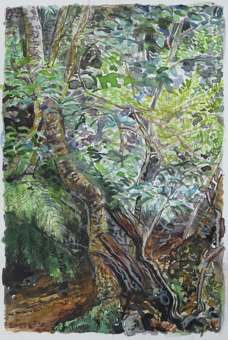 (CreativeWork) Jungle Circuit 29 by Meredith Cooper. Watercolour Paint. Shop online at Bluethumb.