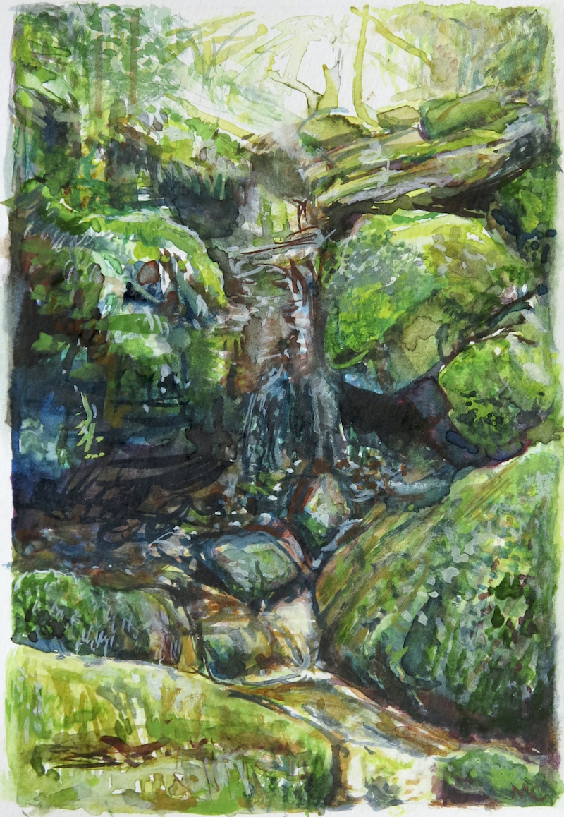 (CreativeWork) Jungle Circuit 15 by Meredith Cooper. Watercolour Paint. Shop online at Bluethumb.