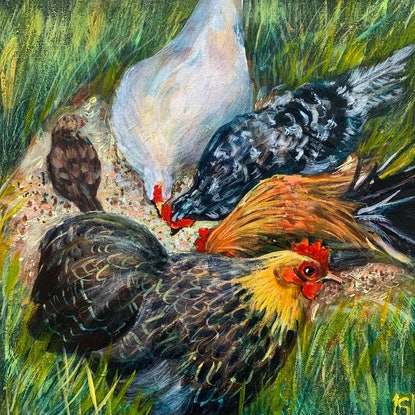 (CreativeWork) Chooks by Sue Hill. Acrylic Paint. Shop online at Bluethumb.