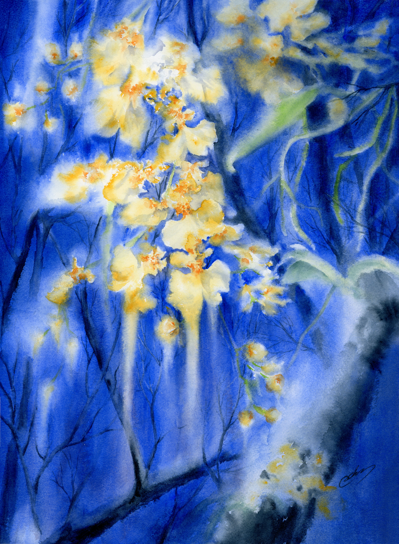 (CreativeWork) Dancing lady orchids by Cecilia Xiao. Watercolour Paint. Shop online at Bluethumb.
