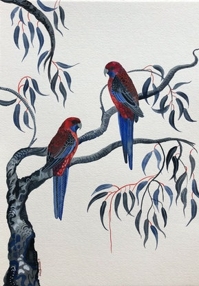 (CreativeWork) Crimson Rosellas of Stanwell Tops by Sally Browne. Watercolour Paint. Shop online at Bluethumb.