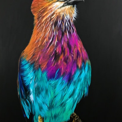 (CreativeWork) LILAC BREASTED ROLLER PORTRAIT by Priya Gore. acrylic-painting. Shop online at Bluethumb.