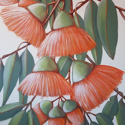 (CreativeWork) Orange Gumnuts by Christine Hookham. #<Filter:0x00007fbc951d5700>. Shop online at Bluethumb.