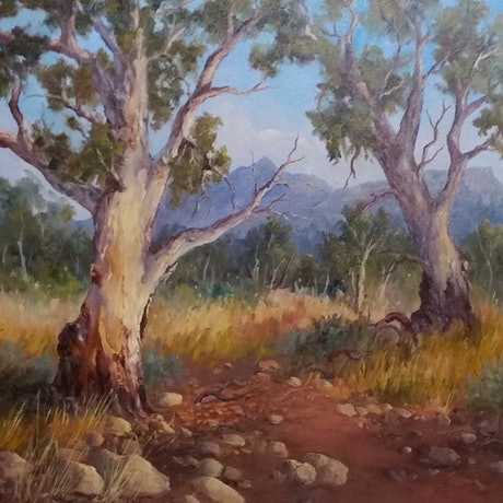 (CreativeWork) Gums in Parachilna Gorge  by Joan Hancock. Oil Paint. Shop online at Bluethumb.