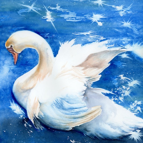 (CreativeWork) The Swan by Cecilia Xiao. Watercolour Paint. Shop online at Bluethumb.