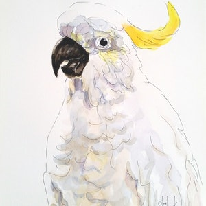 (CreativeWork) ART FOR BUSHFIRE RELIEF - White Cockatoo 3 by Olga Kolesnik. #<Filter:0x0000559a31142e10>. Shop online at Bluethumb.