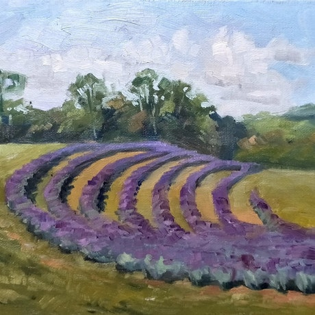 (CreativeWork) Lavender at Mt Cotton by Katia Strounina. Oil Paint. Shop online at Bluethumb.