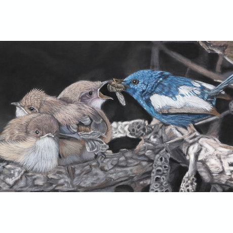 (CreativeWork) Tastes Like Chicken - original pastel painting by Gary Thomas. Drawings. Shop online at Bluethumb.