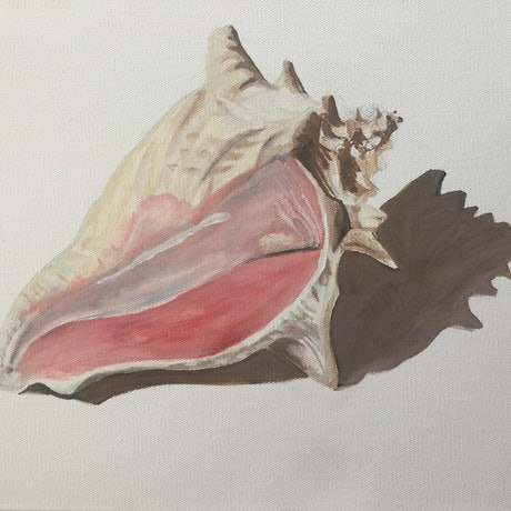 (CreativeWork) Shell 1 by Christopher Steele. Oil Paint. Shop online at Bluethumb.