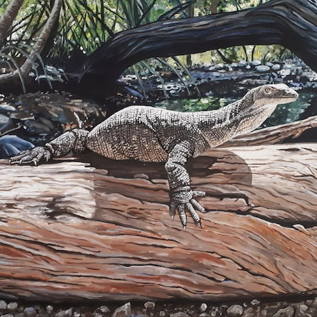 (CreativeWork) Australian Water Monitor, just chilling by Alicia Hart. Acrylic Paint. Shop online at Bluethumb.