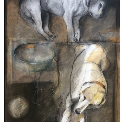 (CreativeWork) Dark Dog  by Rod BAX. Drawings. Shop online at Bluethumb.