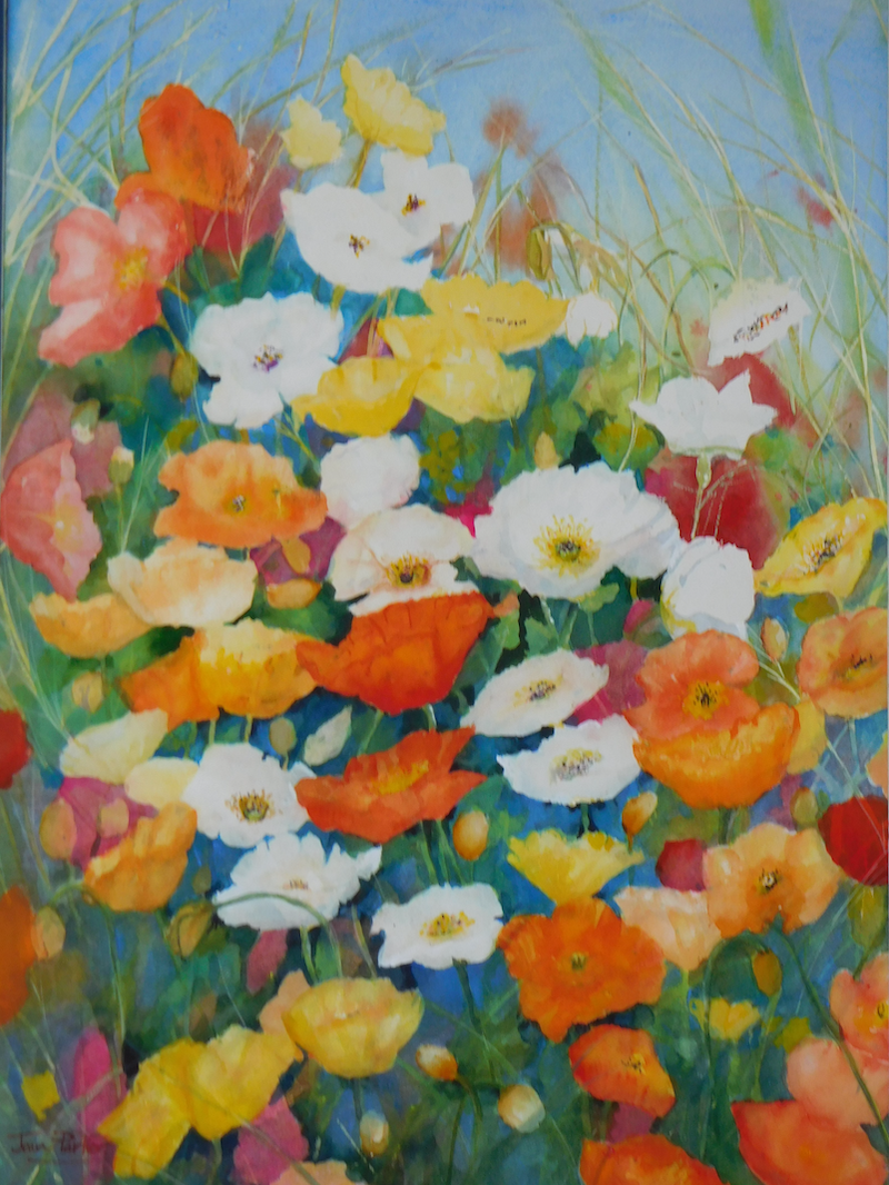 (CreativeWork) Lots of Poppies by Jean Parker. Watercolour Paint. Shop online at Bluethumb.