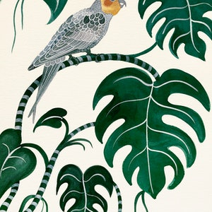 (CreativeWork) Cockatiel Monstera by Sally Browne. #<Filter:0x0000564ca8344388>. Shop online at Bluethumb.