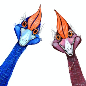 (CreativeWork) Curious Cassowaries by Linda Callaghan. #<Filter:0x00007f7db4c2ab58>. Shop online at Bluethumb.