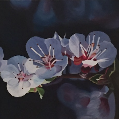 (CreativeWork) Cherry Blossom by Jenny McGrath. Acrylic Paint. Shop online at Bluethumb.