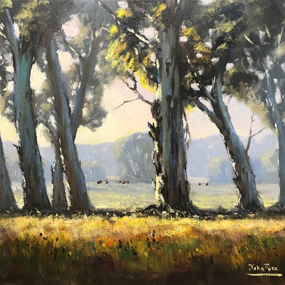 (CreativeWork) Morning Light, Dunnville Loop by John Rice. #<Filter:0x000055c6e03d57f0>. Shop online at Bluethumb.