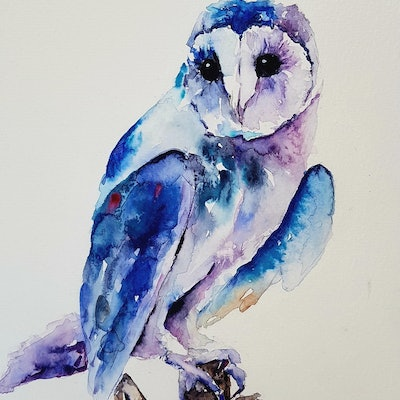 (CreativeWork) Blue Owl by Christine Manby. Watercolour Paint. Shop online at Bluethumb.