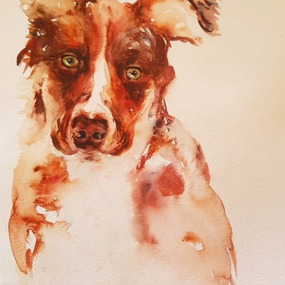 (CreativeWork) A liitle sad by Christine Manby. Watercolour Paint. Shop online at Bluethumb.