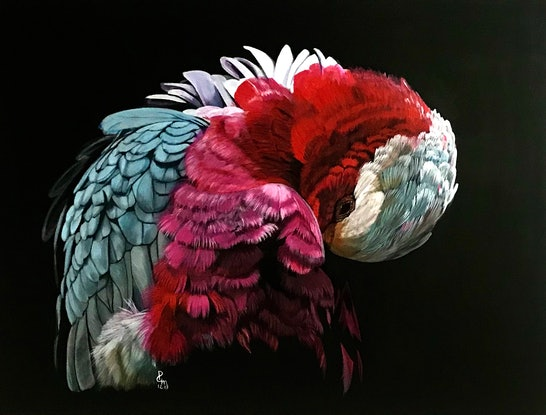 (CreativeWork) Galah Portrait by Priya Gore. Acrylic Paint. Shop online at Bluethumb.