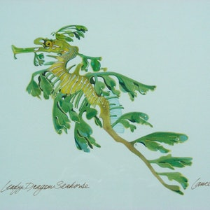 (CreativeWork) Leafy Sea Dragon by Lance Ross. #<Filter:0x00007fbcb3313658>. Shop online at Bluethumb.