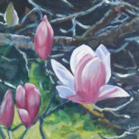 (CreativeWork) Magnolia beauty by Anne Strambi. Oil Paint. Shop online at Bluethumb.