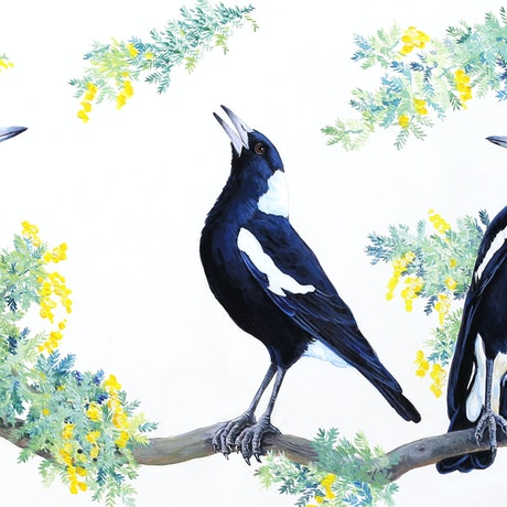 (CreativeWork) Magpies by Katherine Castle. Acrylic Paint. Shop online at Bluethumb.