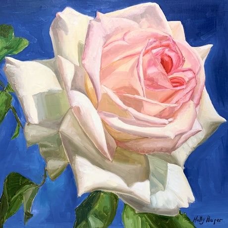 (CreativeWork) Soft Rose by Holly Harper. Oil Paint. Shop online at Bluethumb.
