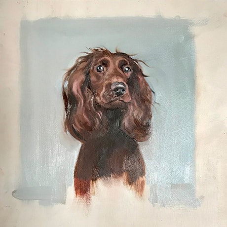(CreativeWork) Bella by Donna Christie. Oil Paint. Shop online at Bluethumb.