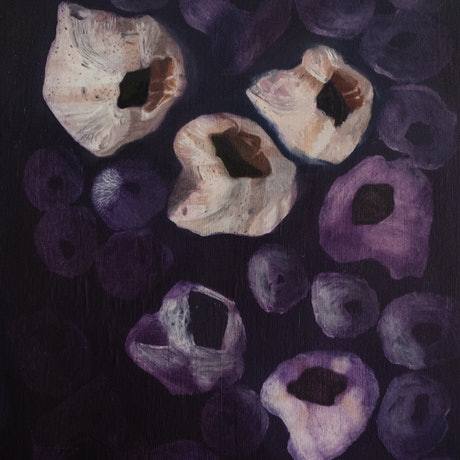 (CreativeWork) Barnacle study #1 by Zoe Barber. Oil Paint. Shop online at Bluethumb.