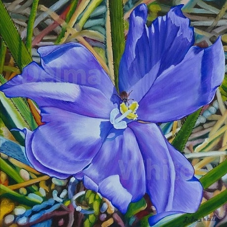 (CreativeWork) Purple Iris by Delma White. Oil Paint. Shop online at Bluethumb.