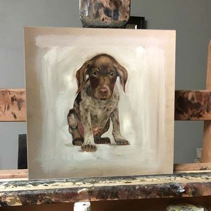 (CreativeWork) Bruce by Donna Christie. Oil Paint. Shop online at Bluethumb.