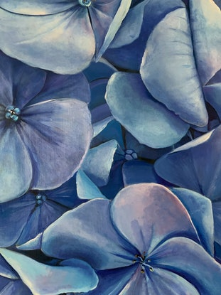 (CreativeWork) HYDRANGEA by Madeleine Simson. Acrylic Paint. Shop online at Bluethumb.
