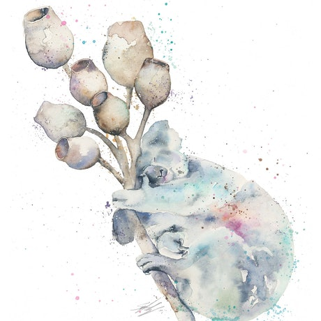 (CreativeWork) Koala and Gumnuts by Stephanie Elizabeth. Watercolour Paint. Shop online at Bluethumb.
