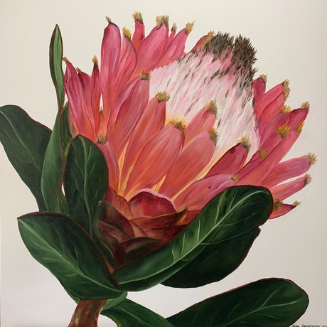 (CreativeWork) Protea 2 by Julie Christensen. Acrylic Paint. Shop online at Bluethumb.