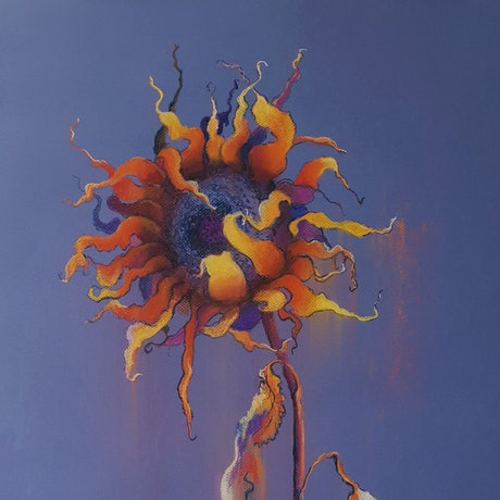 (CreativeWork) Follow The Sun by Lucinda Leveille. Drawings. Shop online at Bluethumb.
