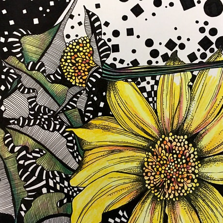(CreativeWork) Yellow Native Daisy 1 by Tania Daymond. Drawings. Shop online at Bluethumb.