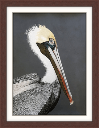 (CreativeWork) Percy the Fish Eater - Pelican - Original Painting by Johanna Larkin. Mixed Media. Shop online at Bluethumb.