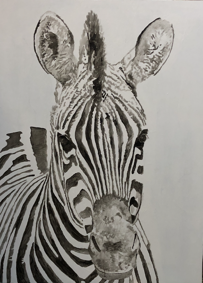 (CreativeWork) Day Zebra by Jennifer Taylor. Acrylic Paint. Shop online at Bluethumb.