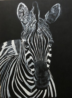(CreativeWork) Night Zebra by Jennifer Taylor. Acrylic Paint. Shop online at Bluethumb.