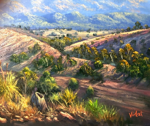 (CreativeWork) An afternoon at Wilpena, Flinder's ranges, SA - ready  to hang by Christopher Vidal. Oil Paint. Shop online at Bluethumb.