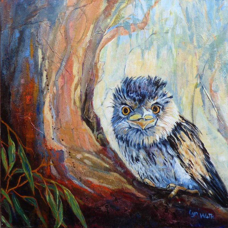 Hide And Seek Tawny Frogmouth By Lyn Watts