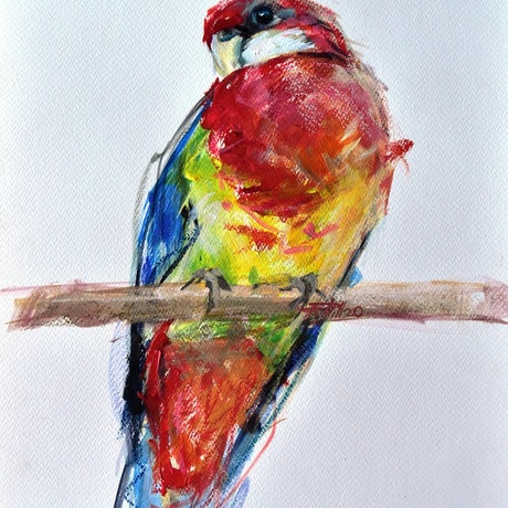 (CreativeWork) Rosella 1 by Rebecca Hill. Mixed Media. Shop online at Bluethumb.